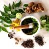 ناگفتههایی از تاثیر طب گیاهی بر سرطان