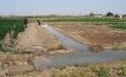 اصلاح فرایند کشاورزی موجب افزایش درآمدزایی  آذربایجان غربی
