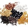 بذرهای وارداتی و ضربه جبران ناپذیر  به کشاورزی آذربایجان غربی