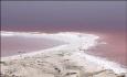 خشکی دریاچه ارومیه عامل موثری درالگوی ابتلا به سرطان نیست