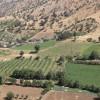 خلع ید ۲۹۳ هکتار از اراضی ملی آذربایجان غربی