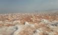 بدون مشارکت تمام ذینفعان نمیتوان به نجات دریاچه ارومیه امید داشت