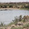 آب ۲۱۲ روستای حاشیه دریاچه ارومیه شور است