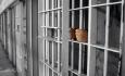 کاهش استفاده از مجازات حبس نیاز جدی زندان های  آذربایجان غربی است