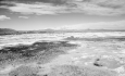 کشاورزی ناپایدار حوزه دریاچه ارومیه حاصل  سیاستهای نادرست حاکمیتی است