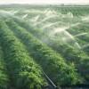 ۷۴ میلیون مترمکعب آب در بخش کشاورزی استان صرفه جویی شده است