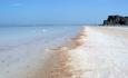 عملکرد سازمان محیط زیست در احیاء دریاچه ارومیه بسیار ضعیف است