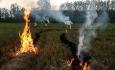 آتش زدن کاه وکلش کشاورزی جرم است و با خاطیان برخورد خواهد شد