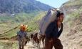 تنگنای معیشتی مرزنشینان امنیت ملی را تهدید می کند