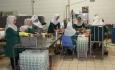 کارفرمایان در حاشیه امن دولتمردان دغدغه  دستمزد کارگران را ندارند