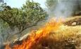 آتش درکمین جنگلها و مراتع آذربایجان غربی