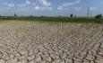 بحران آب خوی نتیجه کم کاری مسئولان استانی و کشوری است