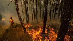 مشارکت مردم در مقابله با آتش سوزی های احتمالی  ضروری است