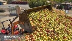 منع فروش سیب صنعتی کنار جاده ها فقط شعار است
