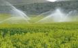 آبیاری نوین مزارع آذربایجان غربی  گرفتار کمبود بودجه