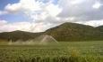 افزایش بهرهوری کشاورزی آذربایجان غربی  در گرو مصرف صحیح منابع آب و خاک